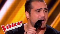 Ray Charles – Georgia On My Mind | Thomas Vaccari | The Voice France 2013 | Blind Audition