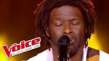 Francis Cabrel – L'encre de tes yeux | Emmanuel Djob | The Voice France 2013 | Prime 1