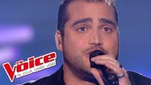 R.Kelly – I Believe I Can Fly   Thomas Vaccari   The Voice France 2013   Prime 1
