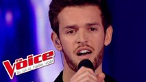 Calogero – Prendre Racine | Florent Torres | The Voice France 2013 | Prime 1