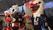 AHL San Jose Barracuda 5 at San Diego Gulls 3