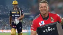 IPL 2019 KKR vs RCB: Chris Lynn departs Early, Dale Steyn strikes | वनइंडिया हिंदी