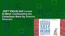 [GIFT IDEAS] Self Comes to Mind: Constructing the Conscious Brain by Antonio Damasio