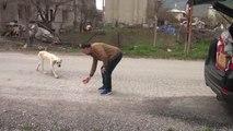 Eski Futbolcu Sokak Sokak Gezerek Hayvanları Besliyor