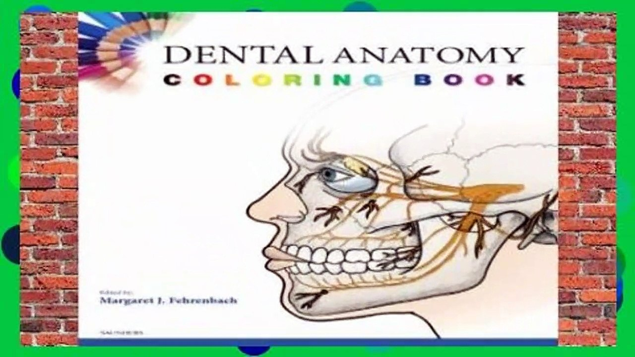 [NEW RELEASES] Dental Anatomy Coloring Book, 1e by SAUNDERS