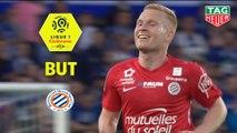 But Florent MOLLET (28ème) / RC Strasbourg Alsace - Montpellier Hérault SC - (1-3) - (RCSA-MHSC) / 2018-19