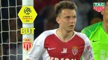 But Aleksandr GOLOVIN (80ème) / Paris Saint-Germain - AS Monaco - (3-1) - (PARIS-ASM) / 2018-19