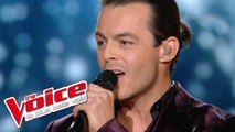 John Miles – Music | Nuno Resende | The Voice France 2013 | Prime 4