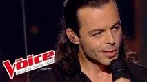 Calogero – En apesanteur | Nuno Resende | The Voice France 2013 | Prime 4