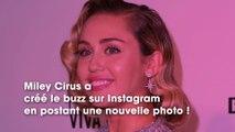 Miley Cyrus : le cliché d'elle totalement nue pour Pâques !