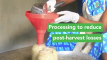 Benin: Processing to reduce post-harvest losses