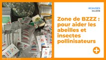 Zone de BZZZ : pour aider les abeilles et insectes pollinisateurs