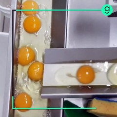 Egg Breakers