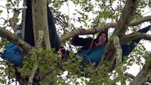 Defiant Extinction Rebellion protesters remain in trees above Parliament Square