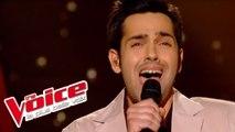 Jevetta Steele – Calling You | Yoann Fréget | The Voice France 2013 | Demi-Finale
