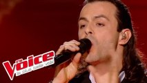 The Platters – The Great Pretender | Nuno Resende | The Voice France 2013 | Finale