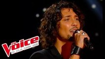 Kate Bush – Wuthering Heights | Fabien Incardona | The Voice France 2014 | Blind Audition