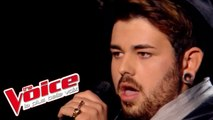Amy Winehouse – Back to Black | Marina d'Amico | The Voice France 2014 | Blind Audition