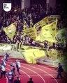 Quand les fans du PAOK célèbrent le titre de champion, ça donne ça