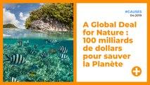 A Global Deal for Nature : 100 milliards de dollars pour sauver la Planète
