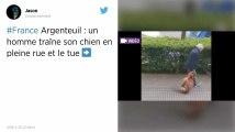 Val-d'Oise. Un homme interpellé après avoir traîné et tué son chien en pleine rue