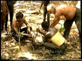 Planting trees to make a difference - The Jarawas of Andaman & Nicobar Islands