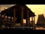 Varadharaja Perumal Temple in Kanchipuram, Chennai