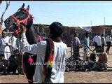 Indian horse decked up for sale at the colourful Pushkar fair