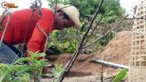 Primitive Technology: Man Make Build Deep Hole Underground Python Trap Using Bamboo & Chicken