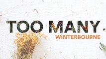 Winterbourne - Too Many