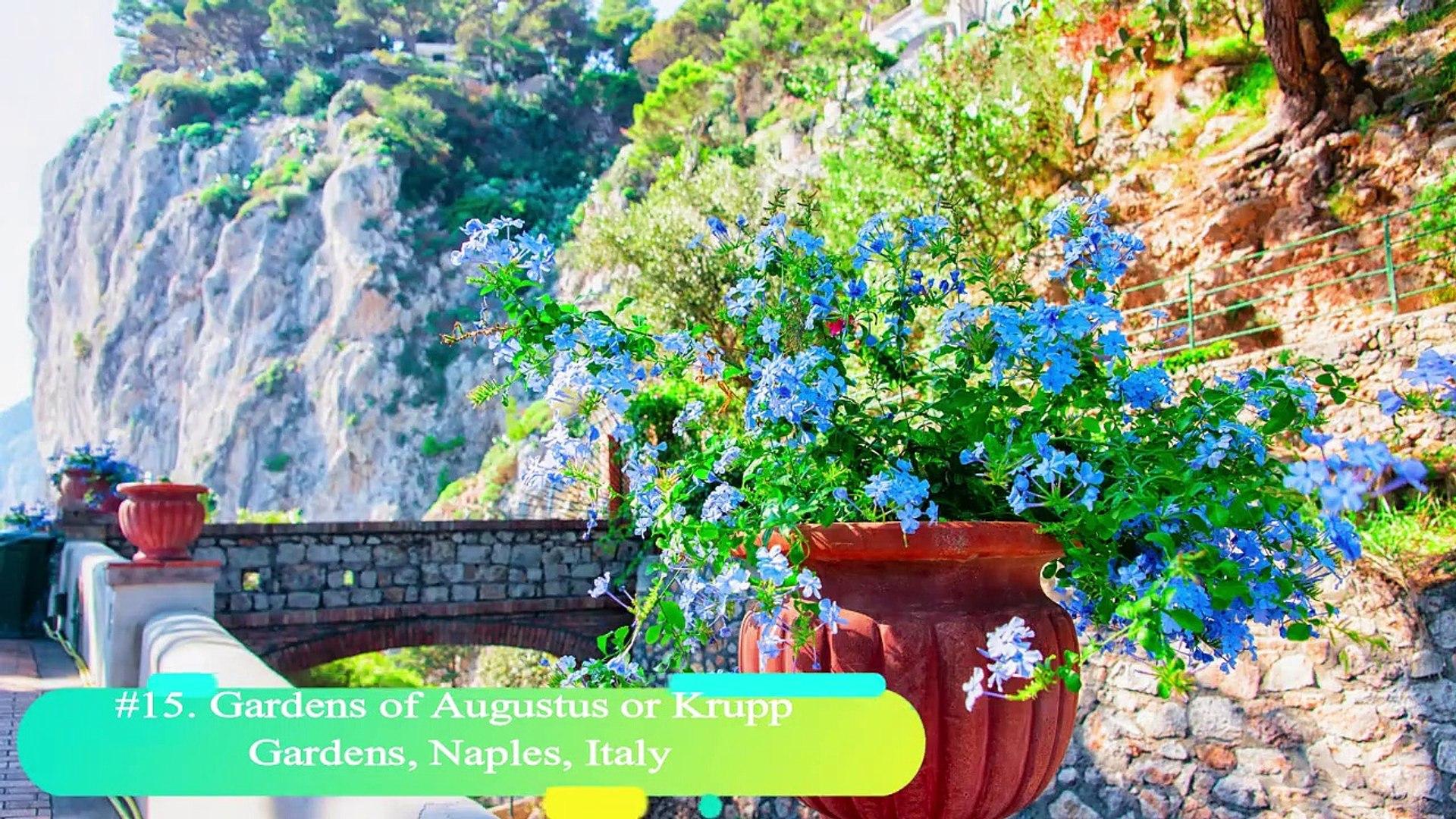 20 Best Botanical Gardens from around the World