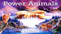 ♫ Power Animals, Shamanic Music - Native American Indians Spiritual Shaman Music