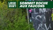 Sommet Roche aux Faucons  - Liège-Bastogne-Liège 2019