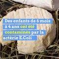 Des fromages rappelés après la contamination de 13 enfants