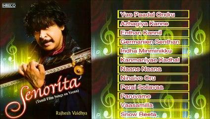Tamil Film Instrumental   Senorita   Rajesh Vaidhya   Veena   Jukebox