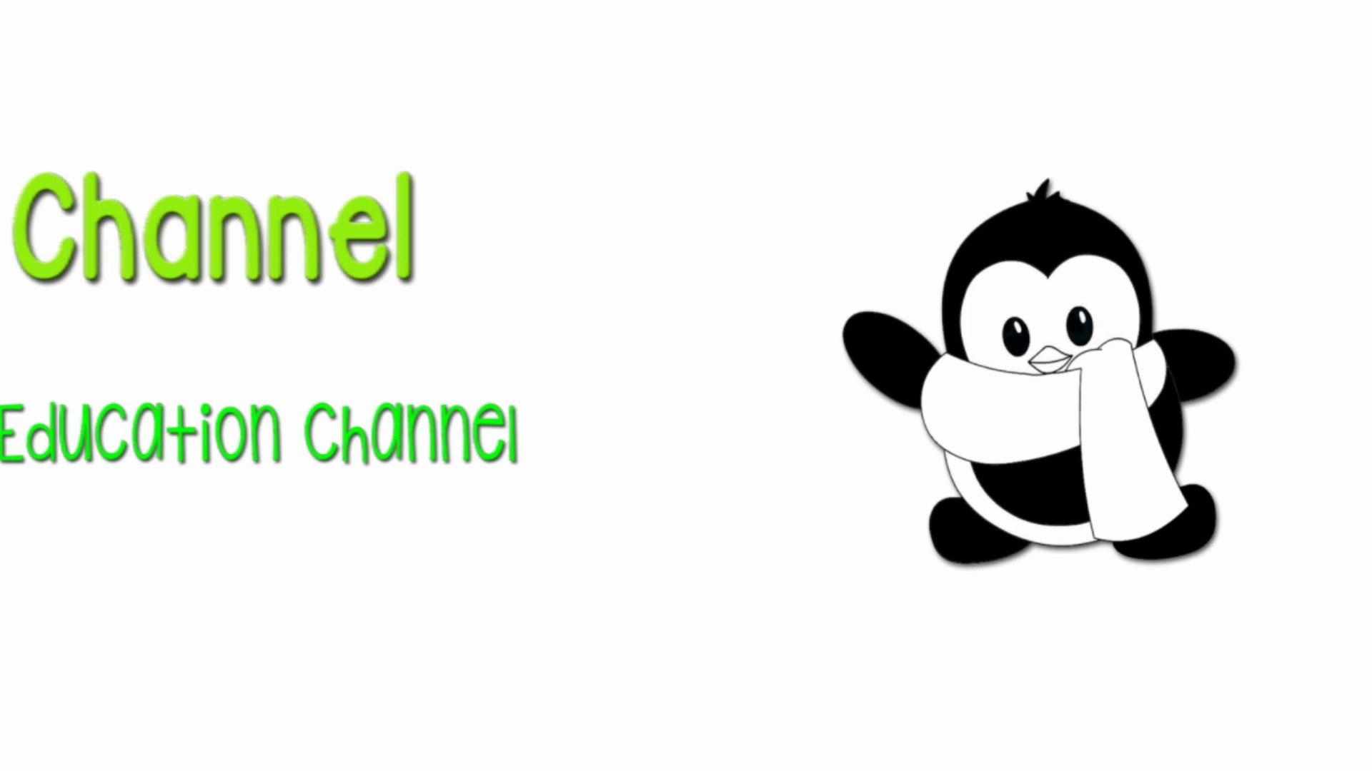 Cartoon Education. Cartoon FoR KiDs. Education Channel