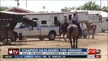 Stampede Days Rodeo this weekend