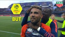But Andy DELORT (80ème) / Montpellier Hérault SC - Paris Saint-Germain - (3-2) - (MHSC-PARIS) / 2018-19