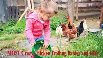 TRY NOT TO LAUGH- MOST Crazy Chicken Trolling Babies and Kids- Funny Babies and Pets - YouTube