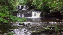 Celtic harp music with water  sound for relaxation arpa celta con sonido de agua para relajacion  musique de harpe celtique avec son de i eau  pour la detente