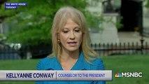 MSNBC Host Says Kellyanne Conway Allegedly Broke Law By Talking About Joe Biden