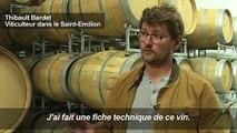 """Un viticulteur crée le vin de """"Game of Thrones"""""""