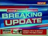 Congress' Priyanka Gandhi plays with snakes in Sonia Gandhi's Raebareli seat, Uttar Pradesh