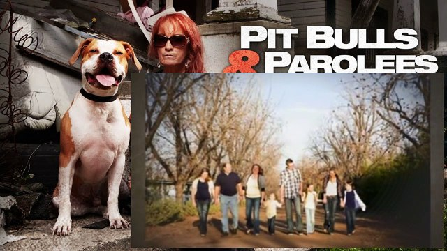 Pit Bulls And Parolees S03E12