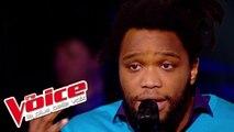 Céline Dion – Un garçon pas comme les autres | Spleen | The Voice France 2014 | Épreuve Ultime