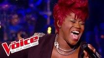 Pascal Obispo – Sa raison d'être   Stacey King   The Voice France 2014   Épreuve Ultime