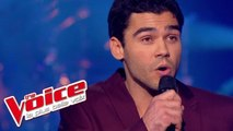 Céline Dion – My Heart Will Go On | Adrien Abelli | The Voice France 2014 | Épreuve Ultime