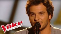 Pascal Obispo – Lucie   Amir Haddad   The Voice France 2014   Prime 3