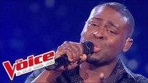 Jean-Jacques Goldman – Puisque tu pars   Wesley   The Voice France 2014   Quarts de finale