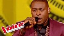 Stevie Wonder – Superstition   Wesley   The Voice France 2014   Finale